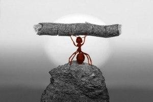 Чому успішні люди ходять на консультації до психологів?
